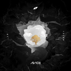 What Would I Change It To - Avicii Feat. Aluna George