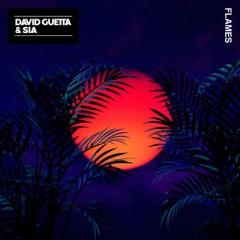 Flames - David Guetta Feat. Sia