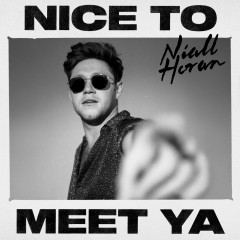 Nice To Meet Ya - Niall Horan
