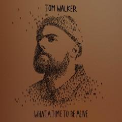 Better Half Of Me - Tom Walker