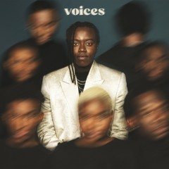 Voices - Tusse
