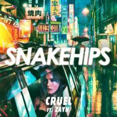 Cruel - Snakehips Feat. Zayn