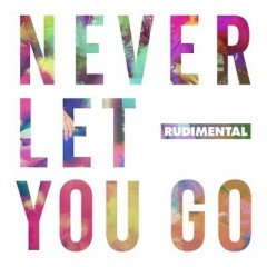 Never Let You Go - Rudimental