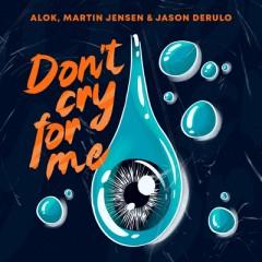 Don't Cry For Me - Alok & Martin Jensen feat. Jason Derulo