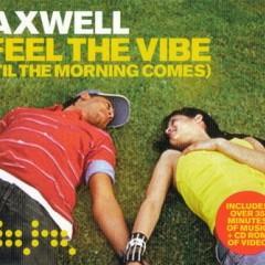 Feel The Vibe - Axwell