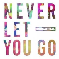 Never Let You Go - Rudimental