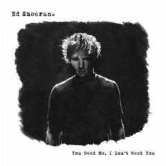 You Need Me, I Don't Need You - Ed Sheeran